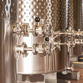 Beer Fermenters & Brite Tanks